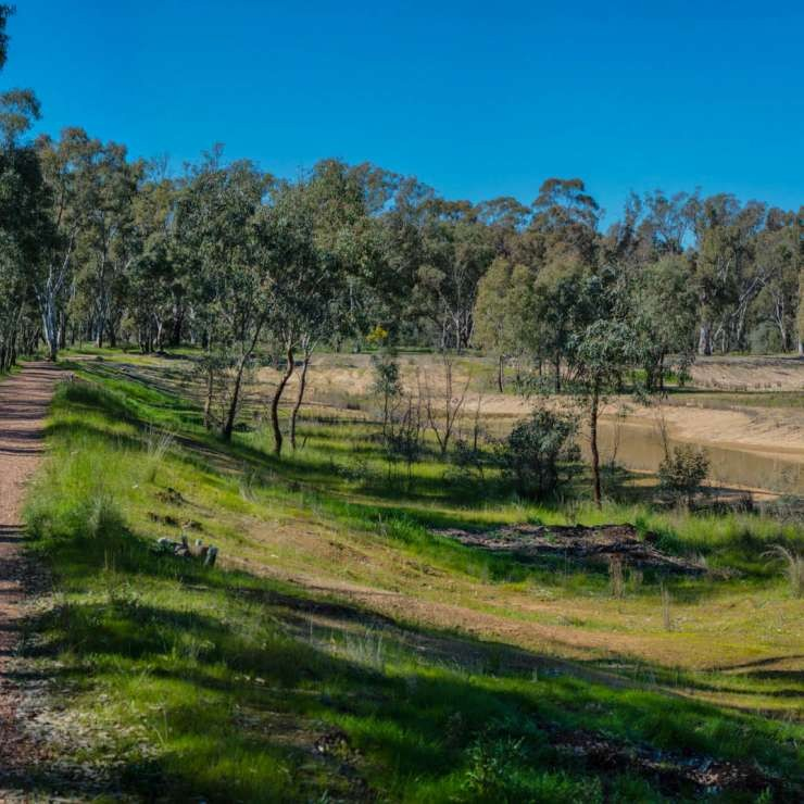 Panoramic bush path to west and VCAL project