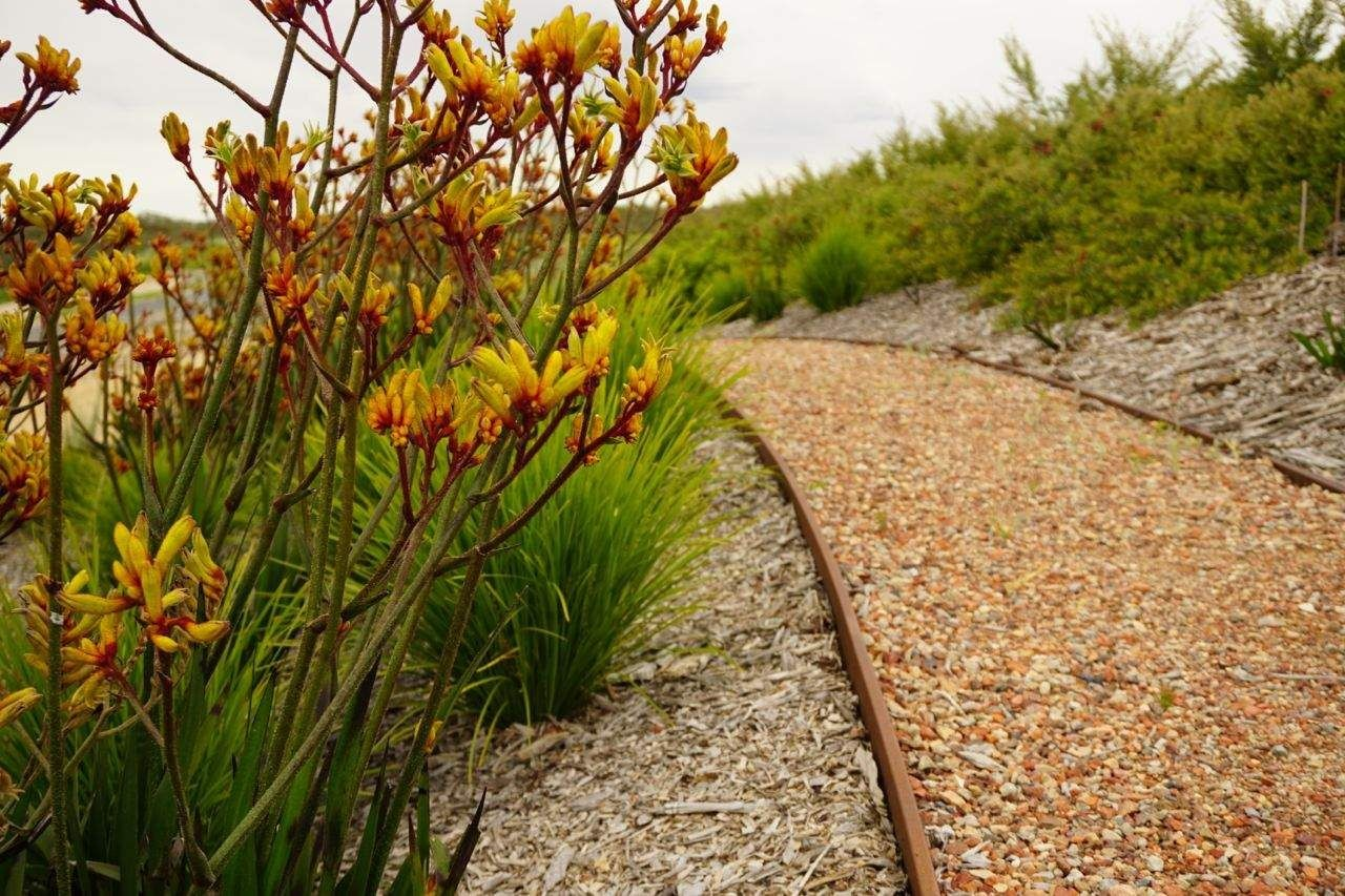Plants And Landscapes Greater Shepparton City Council