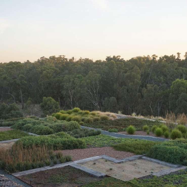 The Terraces Food Garden