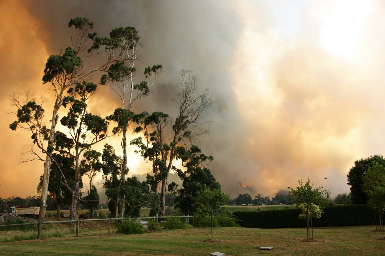 Bushfire Smoke Photo - Courtesy CFA