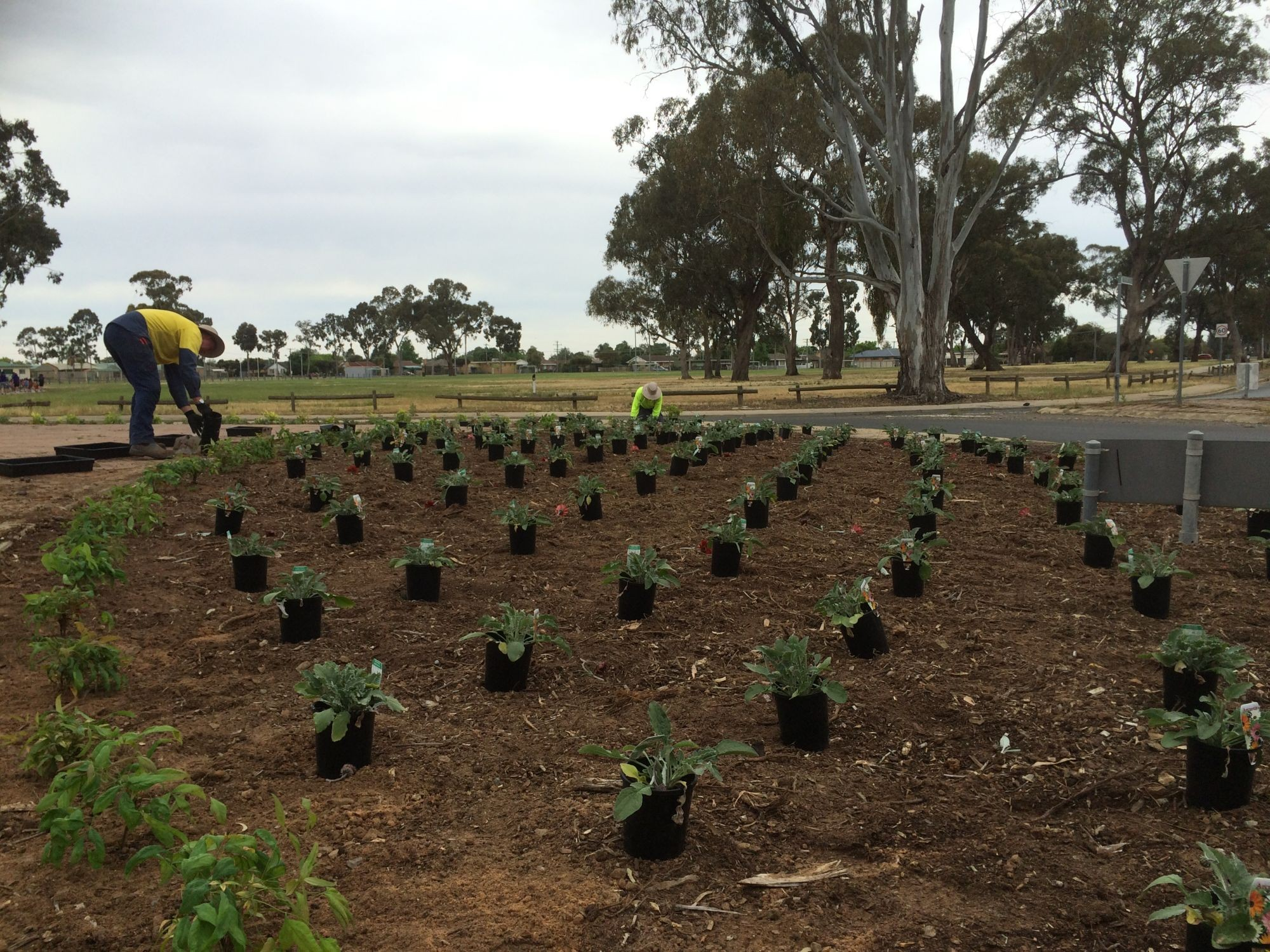WORKS UPDATE: Parks and Gardens Landscaping - Greater Shepparton ...